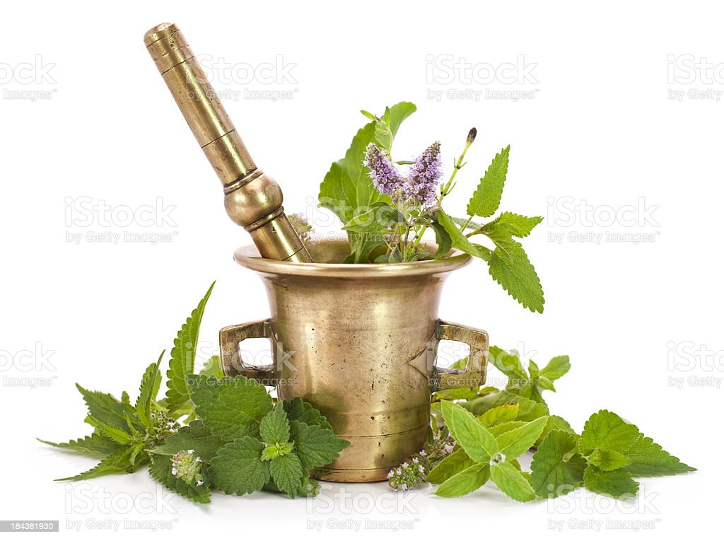 Herbs royalty-free stock photo