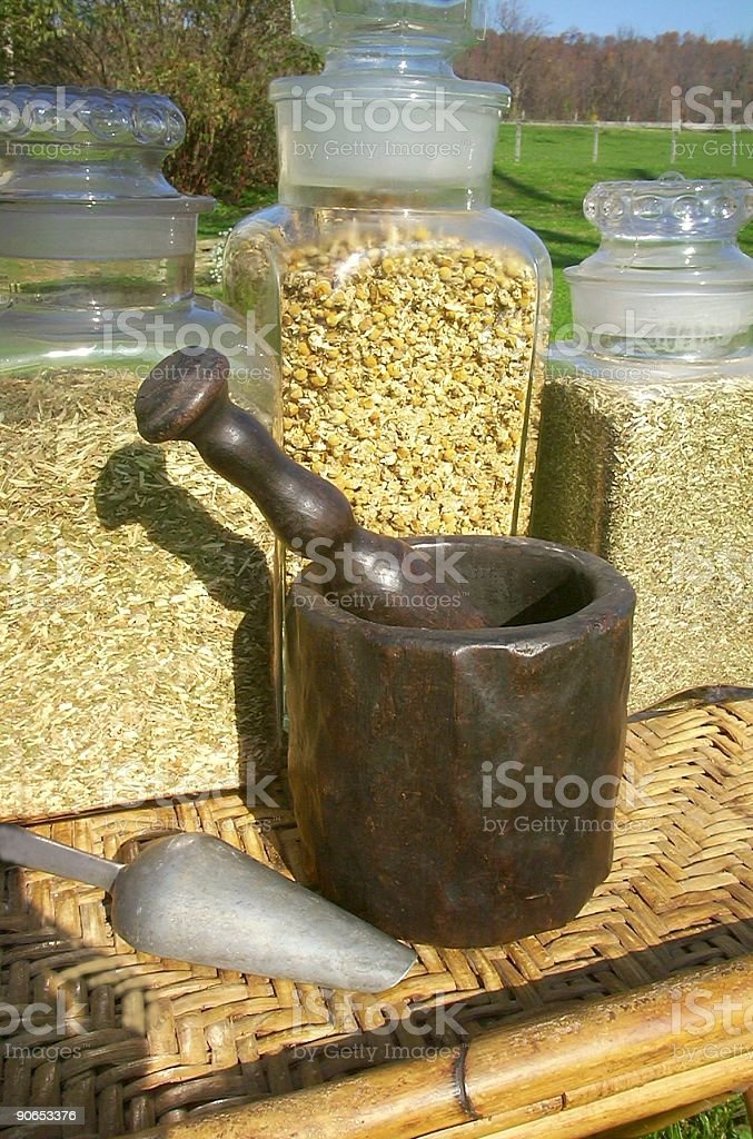 Herbs stock photo