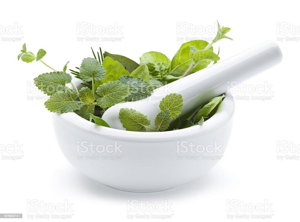 Herbs royaltyfri bildbanksbilder