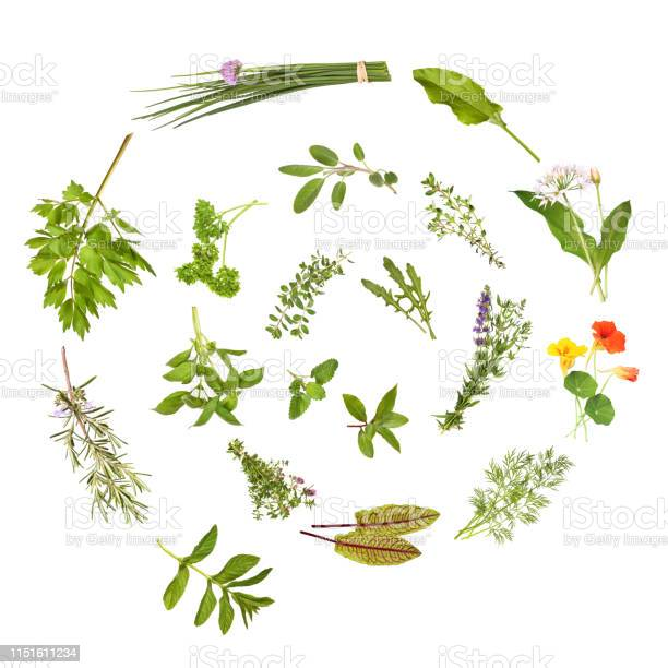Photo of Herbs spiral, isolated