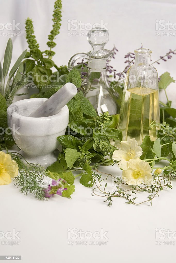 Herbs-2 royalty-free stock photo