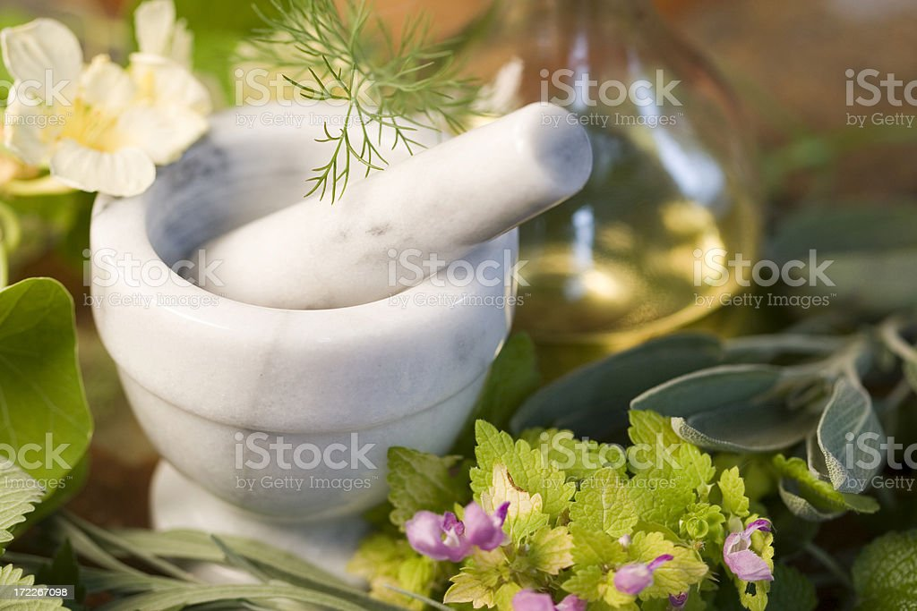 Herbs-3 royalty-free stock photo