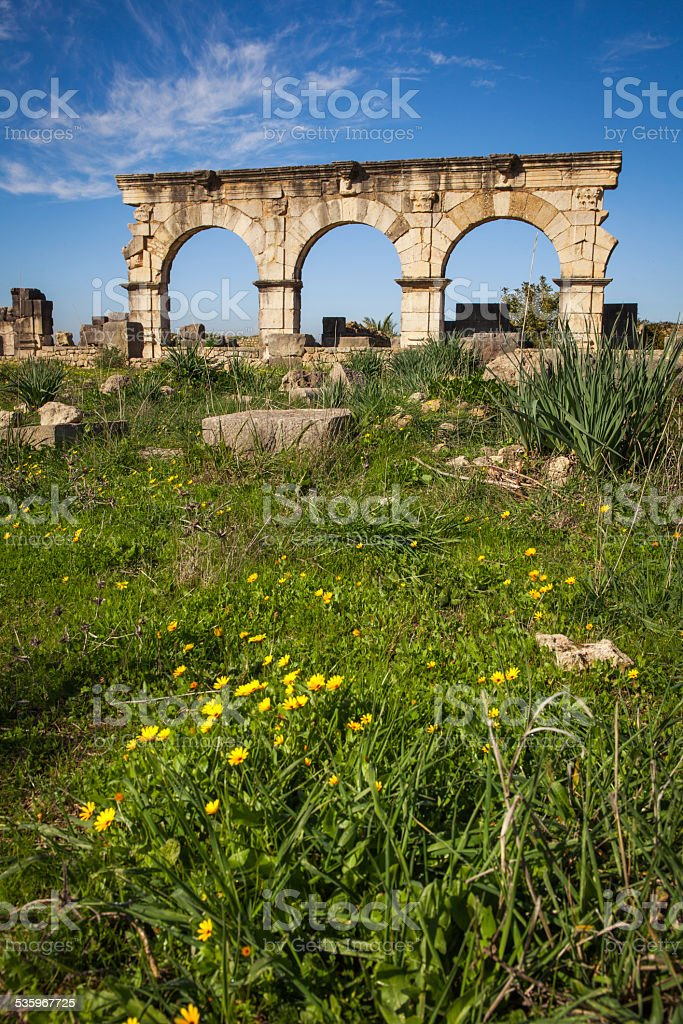 Hercules Works House, Volubilis stock photo
