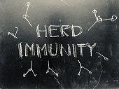 Herd Immunity handwritten on Blackboard as JPG File