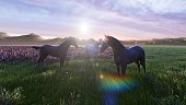 A herd of young horses graze on a picturesque green meadow on a beautiful summer morning, illuminated by the Golden rays