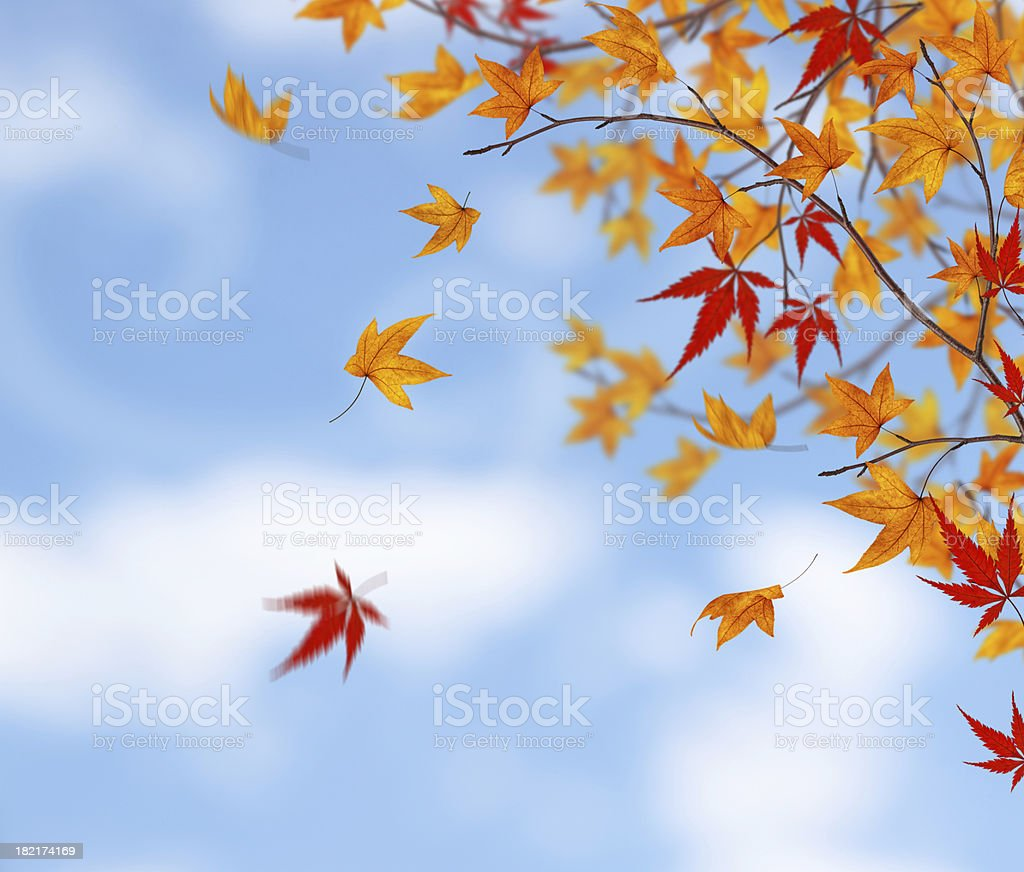 Here Comes The Autumn royalty-free stock photo