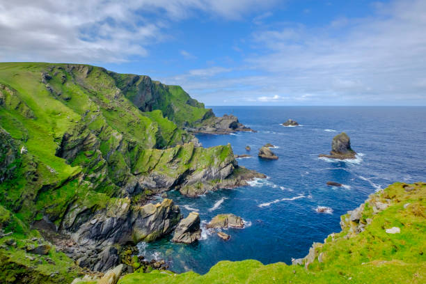 Hermaness National Nature Reserve, a dramatic cliff-top setting and a refuge of thousands of seabirds; it is the Britain's most northerly point, located on the island of Unst, Shetland Islands, Scotland. stock photo