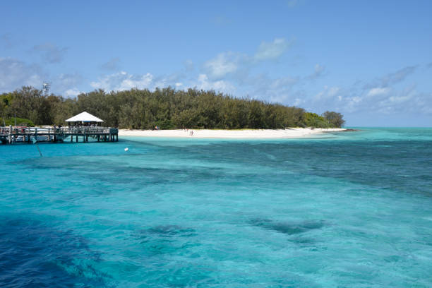 Heron Island, Great Barrier Reef, Australia