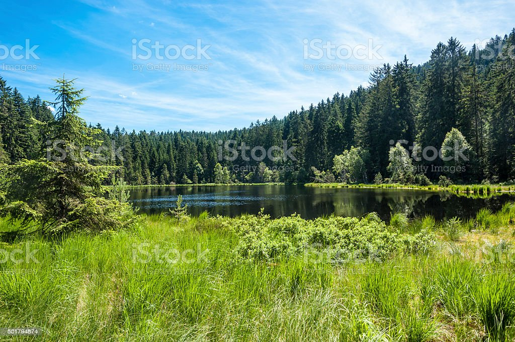 Herrenwiesersee lake in Forbach stock photo