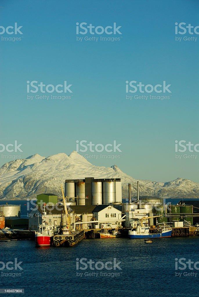 Herring factory stock photo