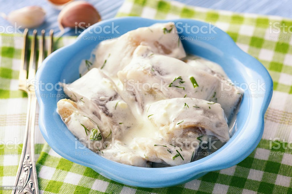 Herring in sour cream sauce with dill. stock photo