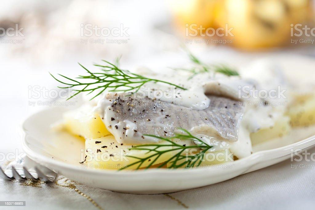 Herring Salad for Christmas stock photo