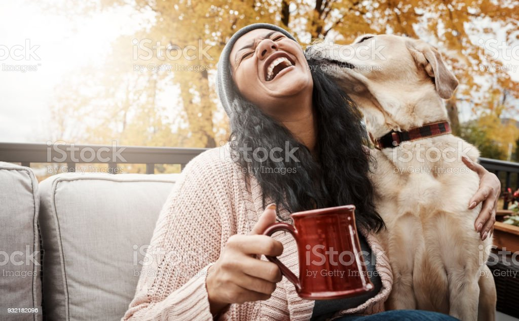 He's cute, cuddly and oh-so-friendly stock photo