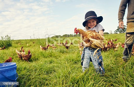 Portrait of an adorable little boy holding a chicken on a farm