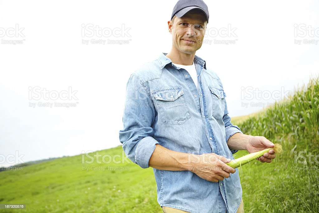 He's pleased with the progress of his crops royalty-free stock photo