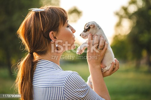 Young woman holding in arms cute puppy dog, embracing and stroking dog on sunset, outside