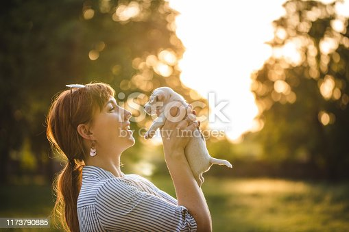 Young woman holding in arms cute Jack Russell Terrier puppy dog, embracing and stroking dog on sunset, outside