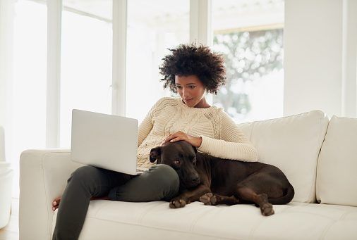 Shot of an attractive young woman petting her dog while using her laptop on the sofa at home