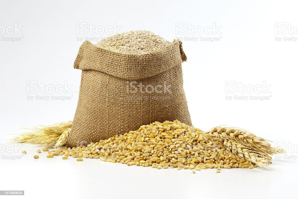 Hessian sack of grain and wheat Whole wheat. Cereal Plant Stock Photo