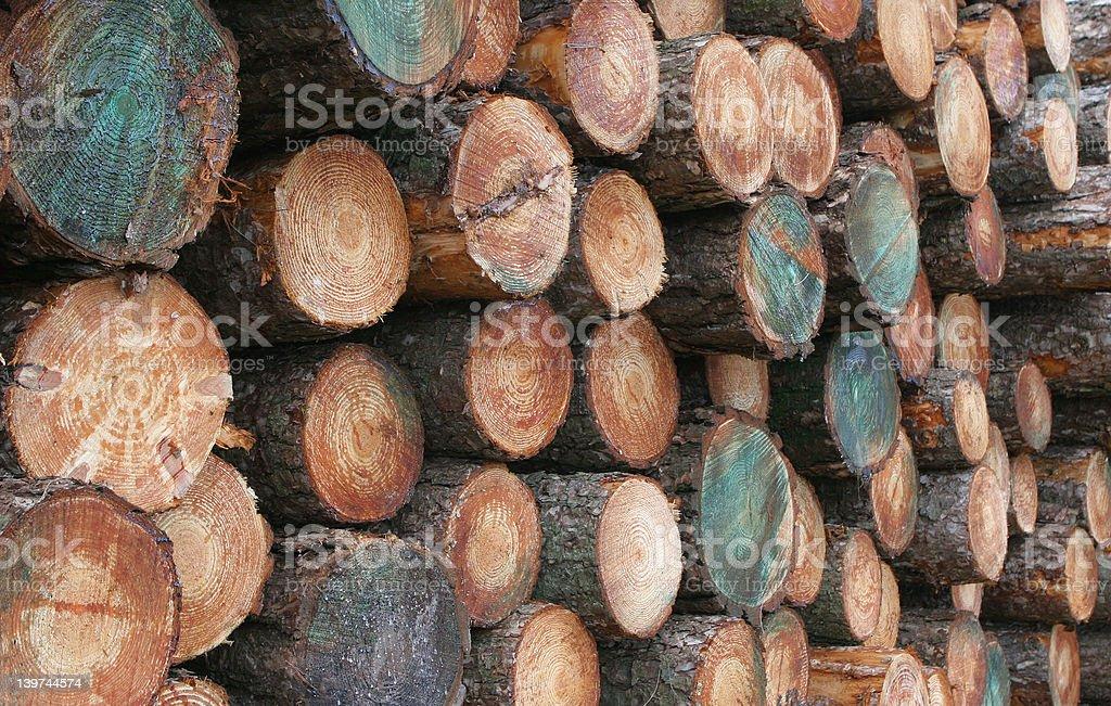 Hewn Timber royalty-free stock photo