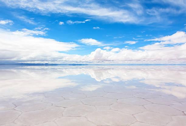 hexagonal shape pattern on thin layer lake salar de uyuni - 阿爾蒂普拉諾山脈 個照片及圖片檔