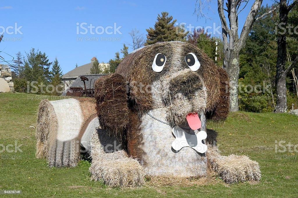 Hey Dog royalty-free stock photo
