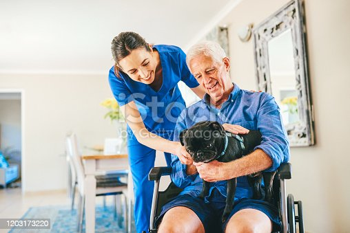 Cropped shot of a senior man showing a female nurse his dog in a nursing home