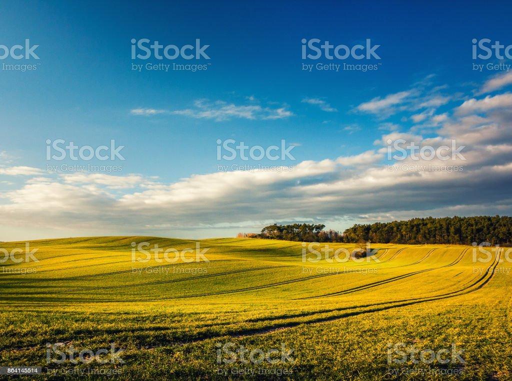 Hügelige Gras Landschaft mit blauem Himmel royalty-free stock photo