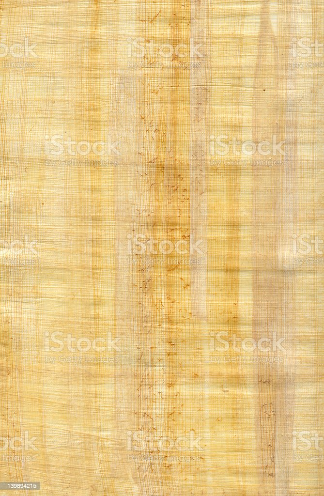 Hi res scan very detailed sheet of papyrus royalty-free stock photo
