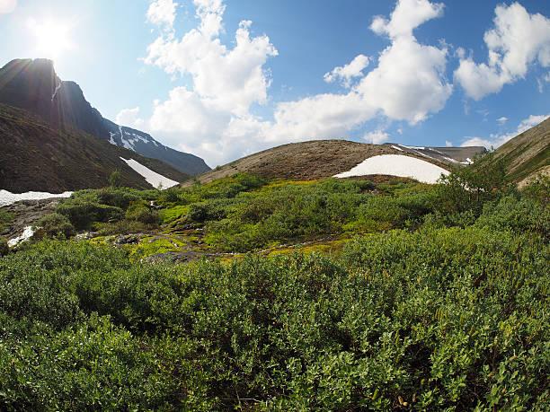 Hibiny mountain - foto de acervo