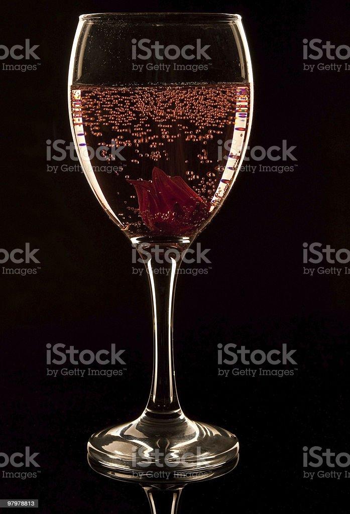 Hibiscus Fizz royalty-free stock photo