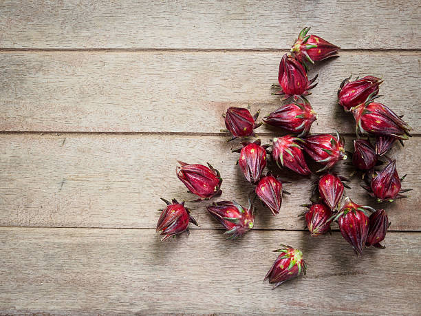 hibiscus sabdariffa or roselle fruits on old wooden background - foderblad bildbanksfoton och bilder