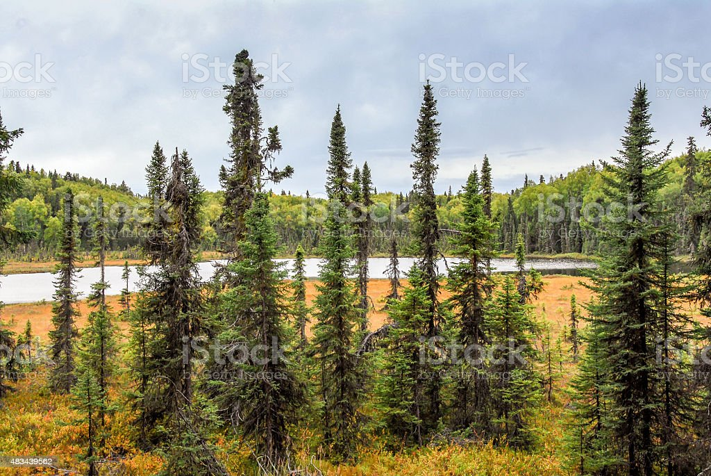 Hidden Alaskan Lake in Autumn stock photo