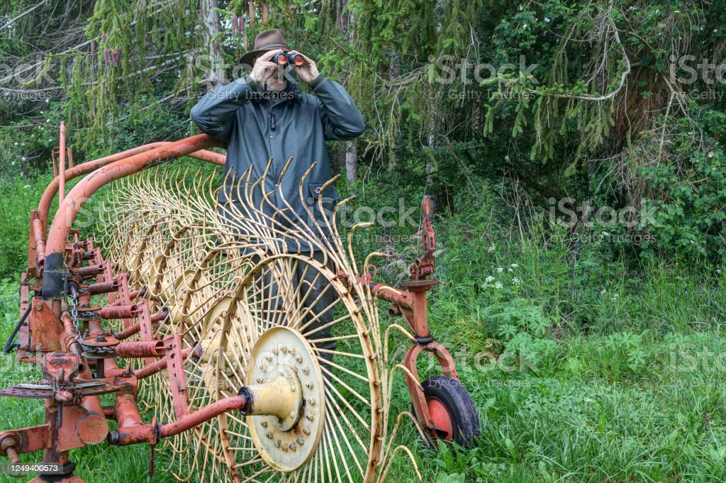 Hidden behind the farmer's star wheel rake, a hunter watches the hunting area through his binoculars. - Royalty-free Active Seniors Stock Photo