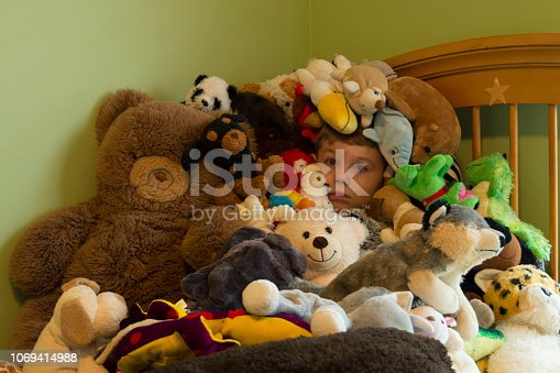 This is a sign that is boy owns too many stuffed animals.  He has piled them on top of himself and his face is barely visible in the collection.