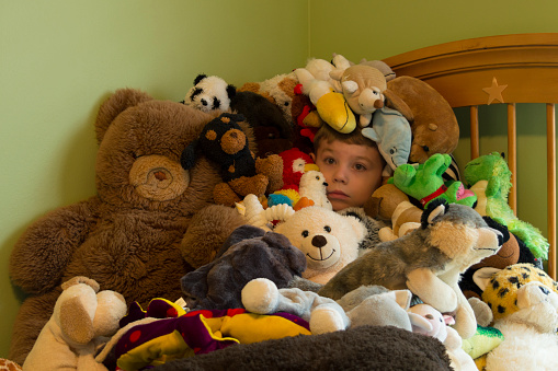 hidden-in-a-pile-of-stuffed-animals-pict
