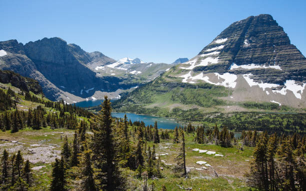 hidden lake at logan pass, glacier national park (montana) - going to the sun road stock pictures, royalty-free photos & images