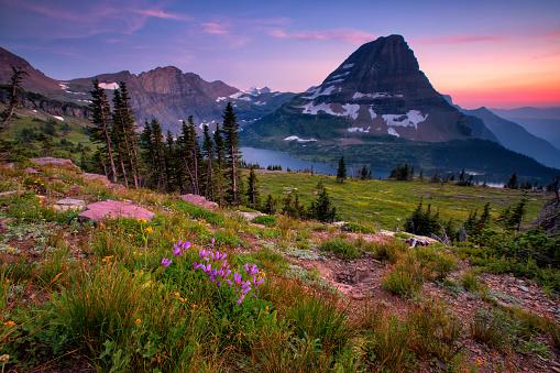istock Hidden Lake Trail, Glacier National Park, Montana, USA 698047452