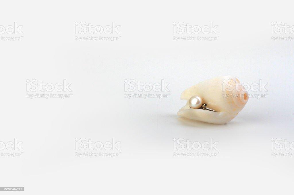 Escondidas Pearl foto royalty-free