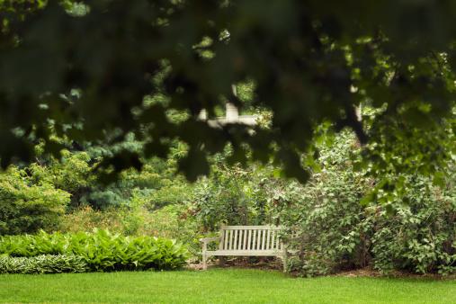 Cool Hidden Secret Garden Bench Stock Photo Download Image Now Andrewgaddart Wooden Chair Designs For Living Room Andrewgaddartcom
