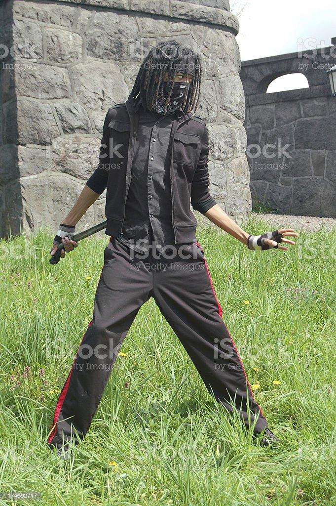 Hidden Sword royalty-free stock photo