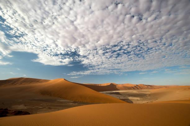 hidden vlei, sossusvlei. namibia - namib wüste stock-fotos und bilder