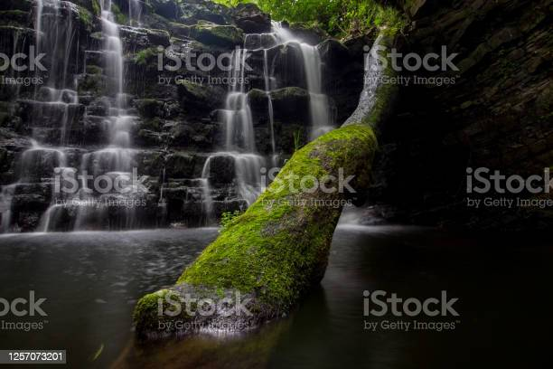 Photo of Hidden waterfall in a deep gorge with trickling white water. Forest of Bowland, Ribble Valley, Lancashire