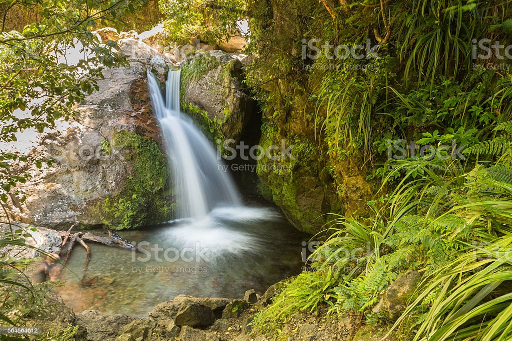 Hidden waterfall in a green forest stock photo