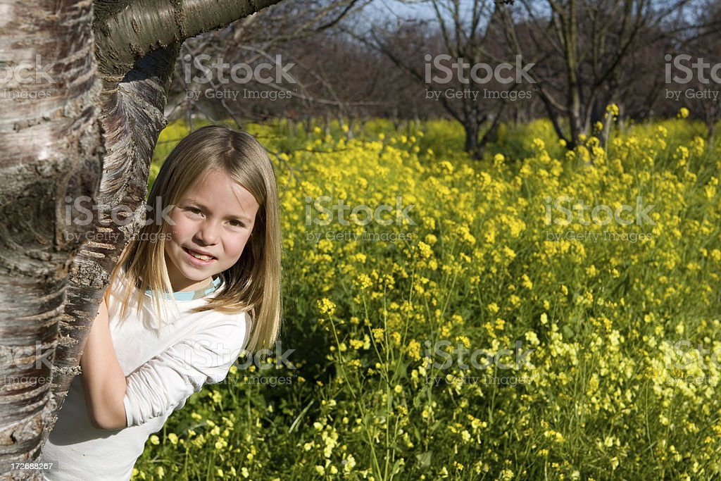 Hide & Seek in the Field stock photo