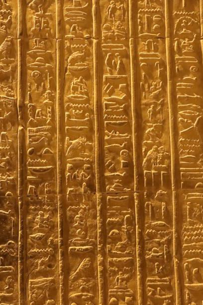 hieroglyphen samen säen kalender in kom ombo tempel - skulpturprojekte stock-fotos und bilder