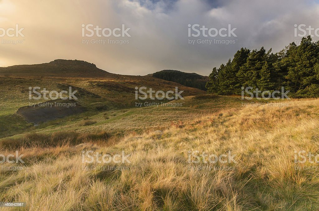 Higger Tor Click to view more - Agricultural Field Stock Photo
