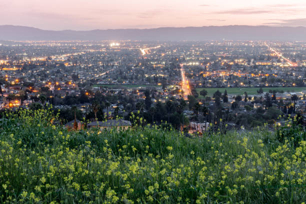 High above Silicon Valley colored with Field Mustards in Spring. stock photo