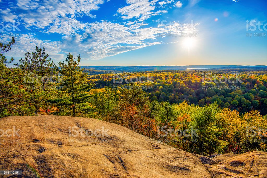 High Above the Autumn Trees stock photo