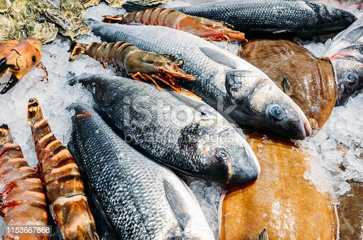 High Angle Still Life of Variety of Raw Fresh Fish Chilling on Bed of Cold Ice in Seafood Market Stall.